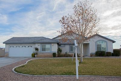 Apple Valley Single Family Home For Sale: 21257 Seibel Lane