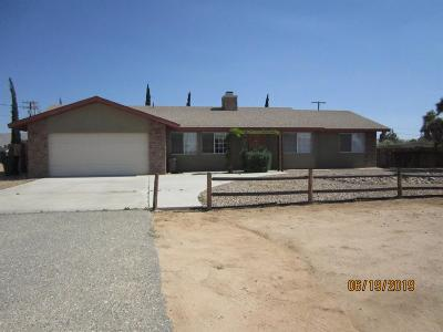 Apple Valley Single Family Home For Sale: 20881 Sitting Bull Road