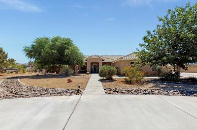 Apple Valley Single Family Home For Sale: 15465 Cheyenne Road
