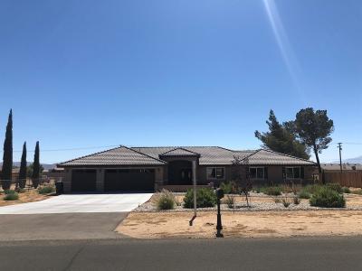 Apple Valley Single Family Home For Sale: 13403 Lakota Road