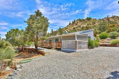 Wrightwood Single Family Home For Sale: 1850 Desert Front Road