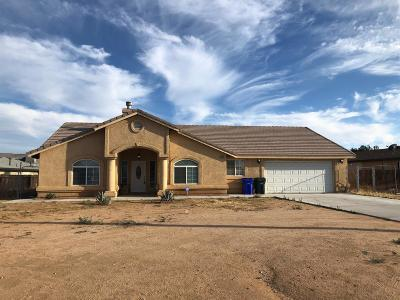 Apple Valley Single Family Home For Sale: 21517 Bear Valley Road