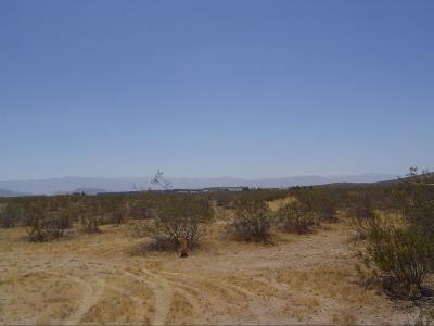 Apple Valley CA Commercial Lots & Land For Sale: $49,000