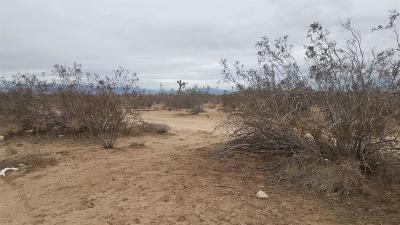 Victorville CA Residential Lots & Land For Sale: $250,000