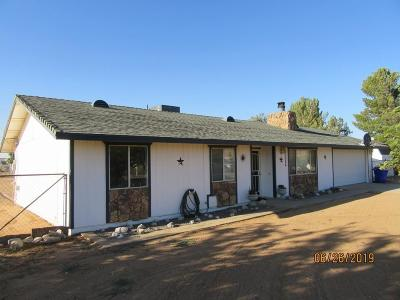 Apple Valley Single Family Home For Sale: 21358 Tussing Ranch Road