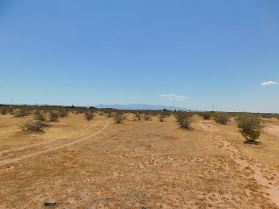 Apple Valley CA Residential Lots & Land For Sale: $19,000