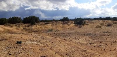 Hesperia CA Residential Lots & Land For Sale: $199,950