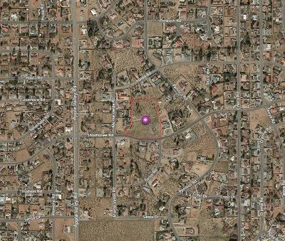 Apple Valley CA Residential Lots & Land For Sale: $399,000