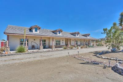 Pinon Hills Single Family Home For Sale: 11235 Crystal Aire Road