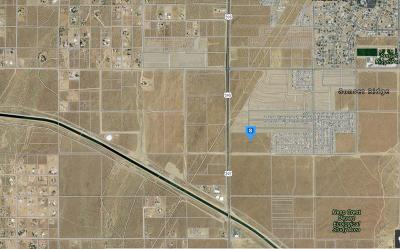 Victorville CA Commercial Lots & Land For Sale: $1,450,000