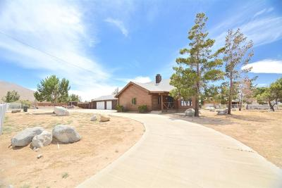 Apple Valley Single Family Home For Sale: 21575 Ocotillo Way