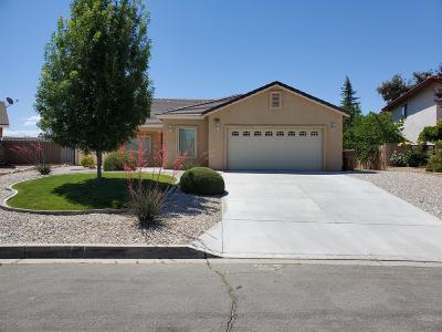 Victorville Single Family Home For Sale: 13865 Evergreen Lane