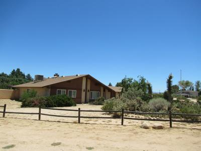 Apple Valley Single Family Home For Sale: 19649 Haida Drive