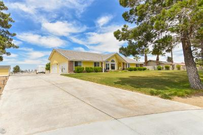 Apple Valley Single Family Home For Sale: 18870 Outer Bear Valley Road