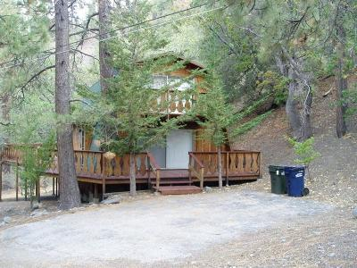 Wrightwood Single Family Home For Sale: 1117 Twin Lakes Road