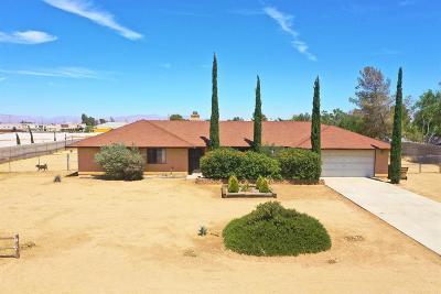 Hesperia Single Family Home For Sale: 11969 Pinon Avenue