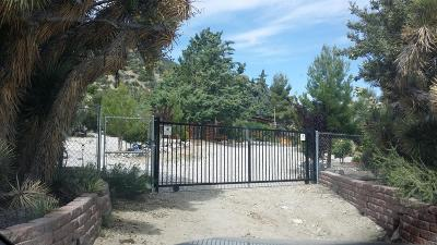 Wrightwood Single Family Home For Sale: 2477 Desert Front Road