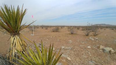 Helendale Residential Lots & Land For Sale: 1001 Chisholm Trail