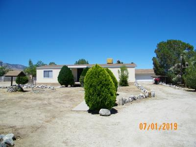 Pinon Hills Single Family Home For Sale: 11174 Wintergreen Road