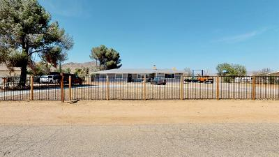 Apple Valley Single Family Home For Sale: 19924 Serrano Road