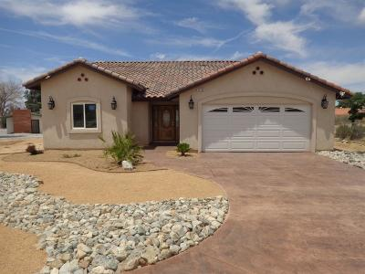 Apple Valley Single Family Home For Sale: 16108 Tao Road