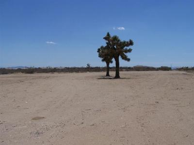 Victorville CA Residential Lots & Land For Sale: $390,000