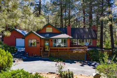 Wrightwood Single Family Home For Sale: 532 Lark Drive