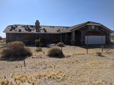 Lucerne Valley Single Family Home For Sale: 9523 Chickasaw Trail