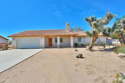 Hesperia Single Family Home For Sale: 15133 Palm Street