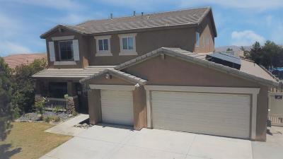 Victorville Single Family Home For Sale: 13573 Desert Palm Lane