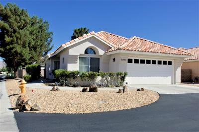 Apple Valley Single Family Home For Sale: 11385 Sawgrass Bend