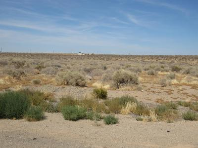 Adelanto Residential Lots & Land For Sale: Daisy Road