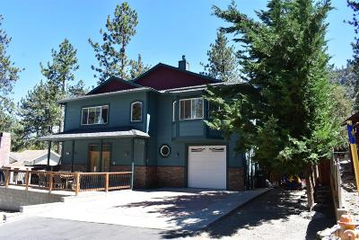 Wrightwood Single Family Home For Sale: 1703 Sparrow Road