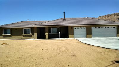 Apple Valley Single Family Home For Sale: 15435 Laguna Seca Drive