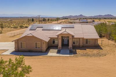 Apple Valley Single Family Home For Sale: 16100 Joshua Road