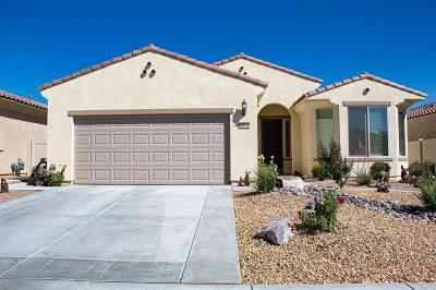 Apple Valley Single Family Home For Sale: 19121 Tiempo Street