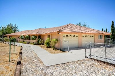 Apple Valley Single Family Home For Sale: 18538 Cocqui Road