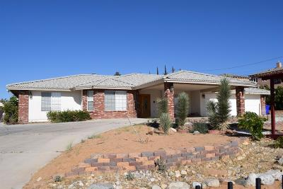 Apple Valley Single Family Home For Sale: 20125 Eyota Road