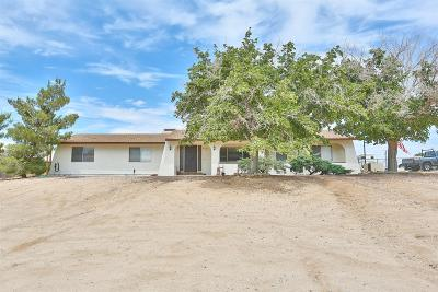 Hesperia Single Family Home For Sale: 18020 Linden Street