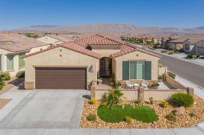 Apple Valley Single Family Home For Sale: 19115 Tiempo Street