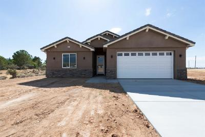 Apple Valley Single Family Home For Sale: 10020 Merino Avenue