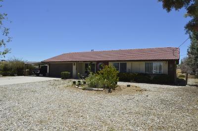 Hesperia Single Family Home For Sale: 16091 Manzanita Street