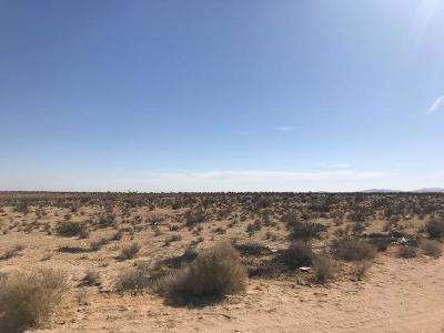 Adelanto CA Residential Lots & Land For Sale: $49,000