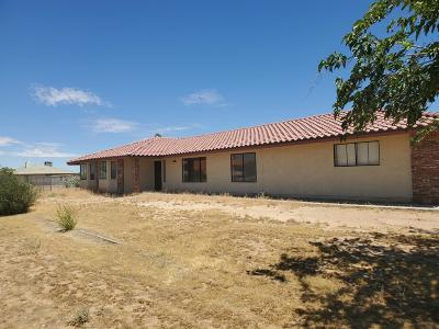 Victorville Single Family Home For Sale: 13681 Wanita Place
