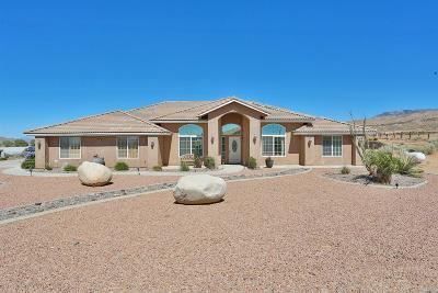 Apple Valley Single Family Home For Sale: 9375 Bowen Ranch Road