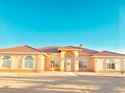 Oak Hills Single Family Home For Sale: 10851 Wilmot Street