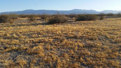 Adelanto Residential Lots & Land For Sale: Palmer Road