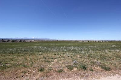 Apple Valley Residential Lots & Land For Sale: 20144 Tussing Ranch Road
