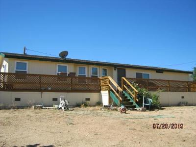 Pinon Hills Single Family Home For Sale: 9895 Oasis Road