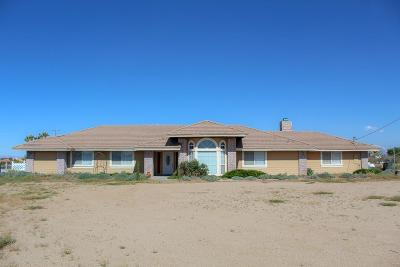 Victorville Single Family Home For Sale: 11775 Aster Road